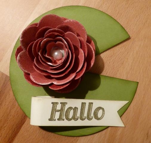 Seerose-Hallo